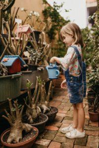 jugar a ser jardinero